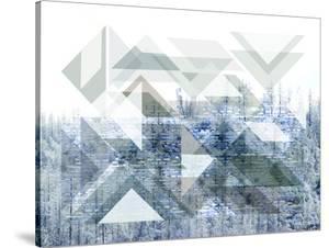 Patterns In Nature Vi by Hope Bainbridge