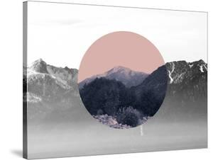 Shapes In Nature Ii by Hope Bainbridge