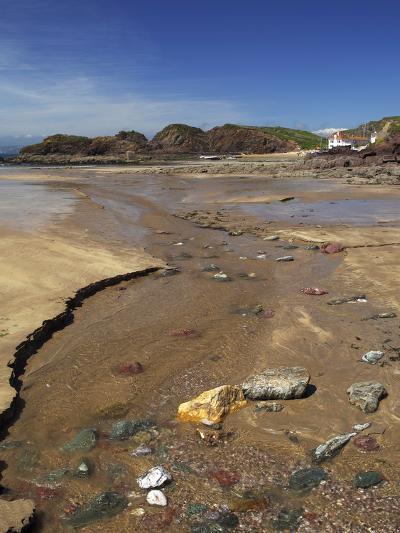 Hope Cove, Devon, England, United Kingdom, Europe-Jeremy Lightfoot-Photographic Print