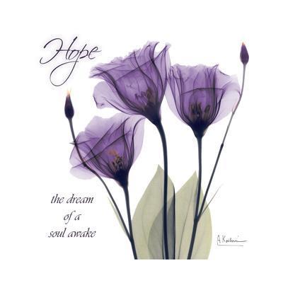 https://imgc.artprintimages.com/img/print/hope-tulip_u-l-pyjolw0.jpg?p=0