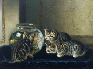 Three Kittens Watching Goldfish by Horatio Henry Couldery