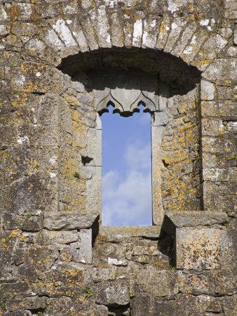 https://imgc.artprintimages.com/img/print/hore-abbey-cashel-town-county-tipperary-munster-republic-of-ireland-europe_u-l-p7kiww0.jpg?p=0