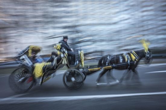 Horse 2-Moises Levy-Photographic Print
