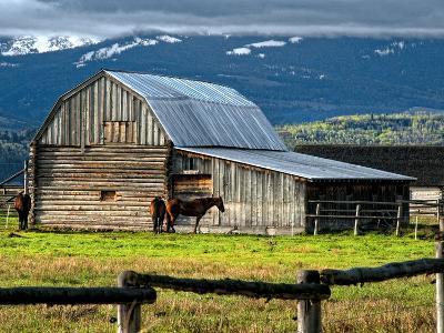 Horse and Barn on Mormon Row, Grand Teton National Park, Wyoming, Usa, May 2008-Bill Wight-Photographic Print