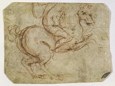https://imgc.artprintimages.com/img/print/horse-and-cavalier_u-l-p55knp0.jpg?p=0