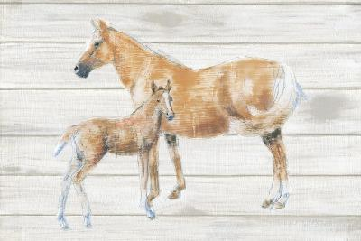 Horse and Colt on Wood-Emily Adams-Art Print
