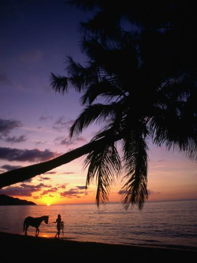 Horse and Rider Take an Easy Stroll Along Cane Bay in St Croix-Steve Simonsen-Photographic Print