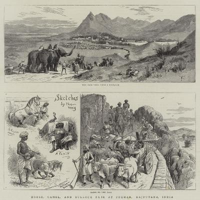 Horse, Camel, and Bullock Fair at Pokhar, Rajputana, India--Giclee Print