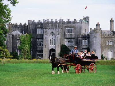 Horse Carriage with Birr Castle Demesne, Ireland-Holger Leue-Photographic Print