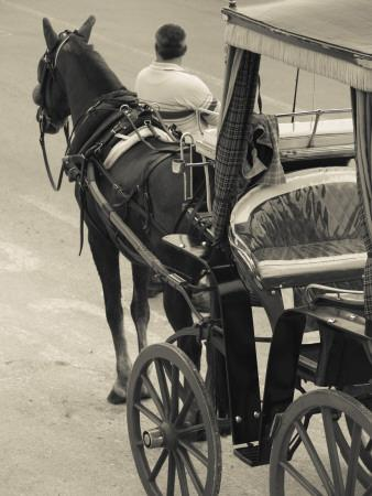 https://imgc.artprintimages.com/img/print/horse-carriages-at-pinto-wharf-floriana-valletta-malta_u-l-pdkmc90.jpg?p=0