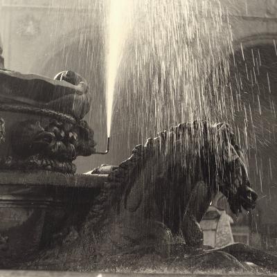 Horse, Detail of the Neptune Fountain, Piazza Della Signoria, Florence-Vincenzo Balocchi-Photographic Print