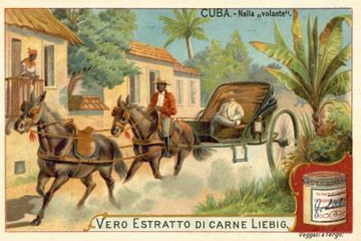 Horse-Drawn Carriage, Cuba