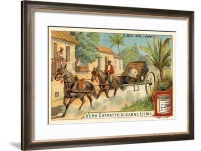 Horse-Drawn Carriage, Cuba--Framed Giclee Print