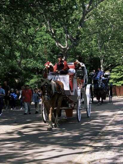 Horse Drawn Carriage in Central Park, Manhattan, New York, New York State, USA-Yadid Levy-Photographic Print