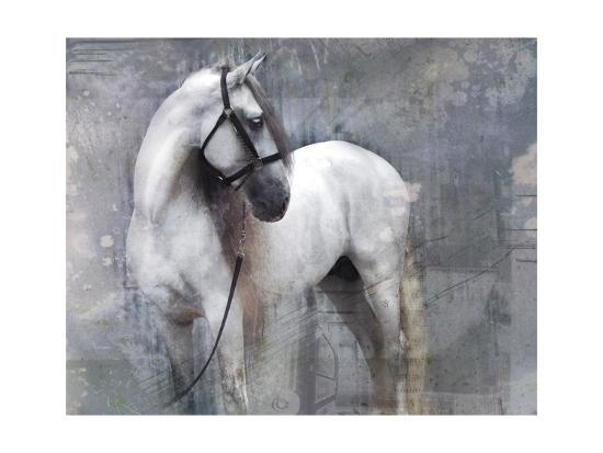 Horse Exposures II-Susan Friedman-Art Print