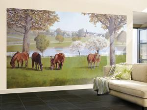 Horse Farm With White Fences Huge Mural Art Print Poster