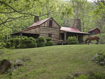 Horse Grazing in the Yard of a Mountain Log Cabin-Greg Dale-Photographic Print
