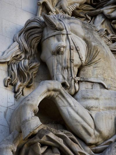 Horse Head Detail on the Arc de Triomphe, Paris, France-Jim Zuckerman-Photographic Print