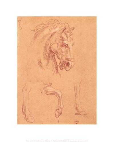 Horse Head-Pier Leone Ghezzi-Art Print