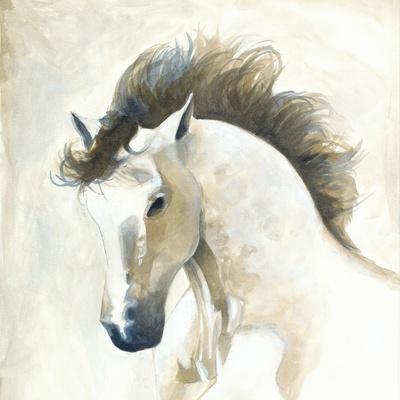 https://imgc.artprintimages.com/img/print/horse-ii_u-l-q19vjeo0.jpg?p=0