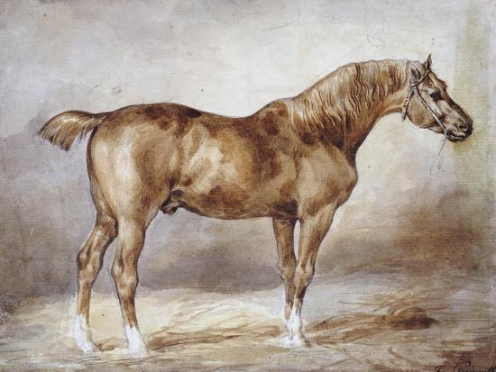 Horse in a Stable-Th?odore G?ricault-Giclee Print