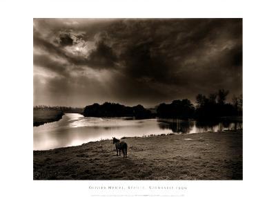 Horse Looking at the river, Normandie 99-Olivier Meriel-Art Print