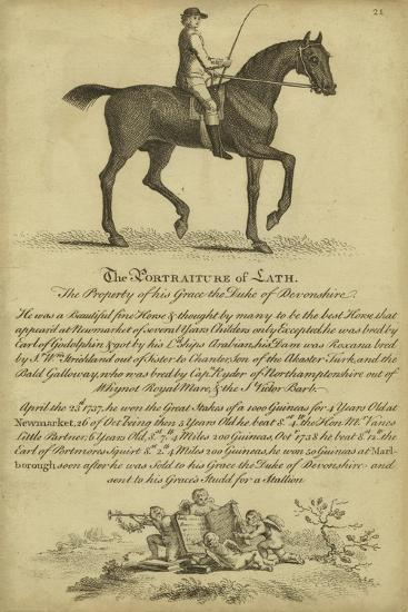 Horse Portraiture III--Art Print