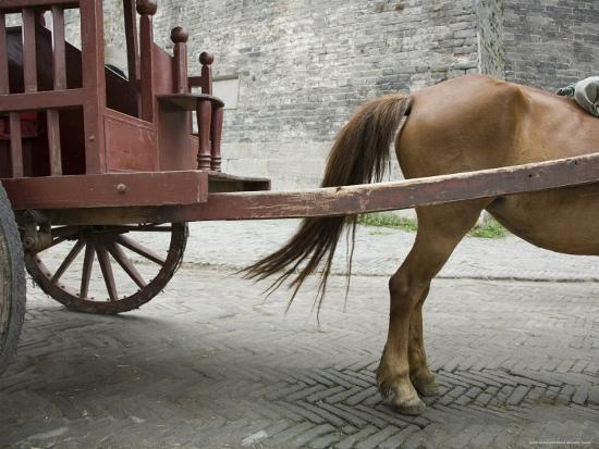 Horse Pulling a Cart in Jingzhou, China-David Evans-Photographic Print