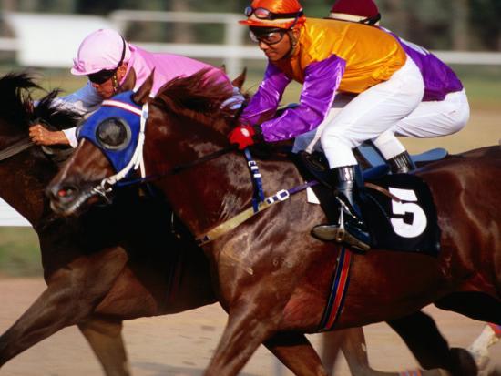 Horse Racing at Saigon Racing Club District 11, Ho Chi Minh City,  Vietnam-Stu Smucker-Photographic Print