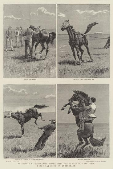Horse Ranching in Queensland-John Charles Dollman-Giclee Print