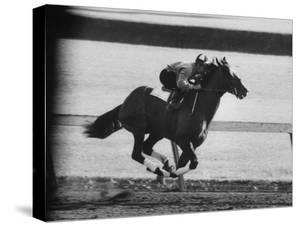 Horse Ridan During Race