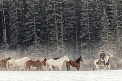 https://imgc.artprintimages.com/img/print/horse-roundup-in-winter-kalispell-montana_u-l-q1d1trm0.jpg?p=0