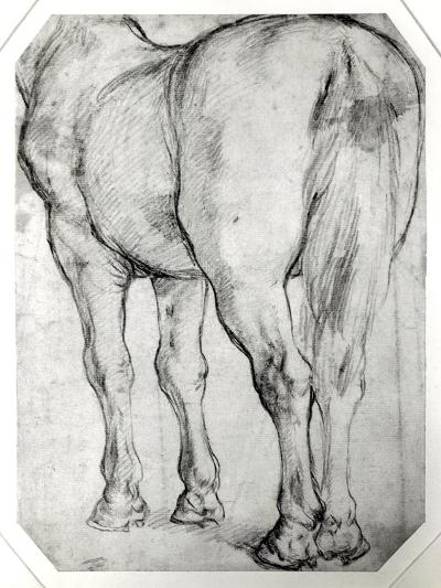 Horse's Rear-Peter Paul Rubens-Giclee Print