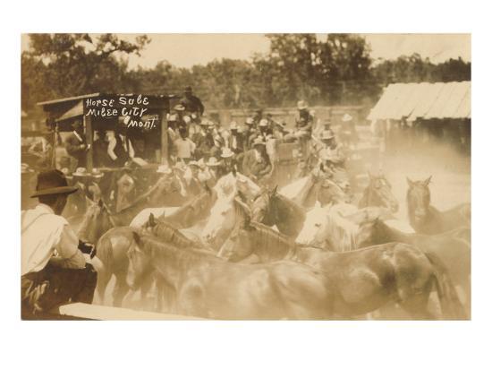 Horse Sale, Miles City, Montana--Art Print