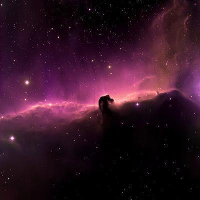 Horsehead Nebula-willmac-Photographic Print
