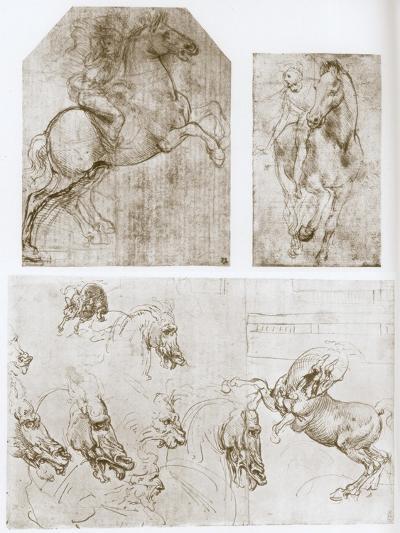 Horseman, 1480-1481-Leonardo da Vinci-Giclee Print
