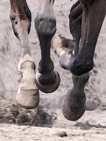Horsepower #1-Steven Maxx-Photographic Print