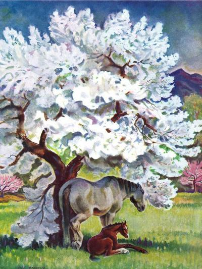 """""""Horses and Tree Blossoms,""""May 1, 1940-Paul Bransom-Giclee Print"""