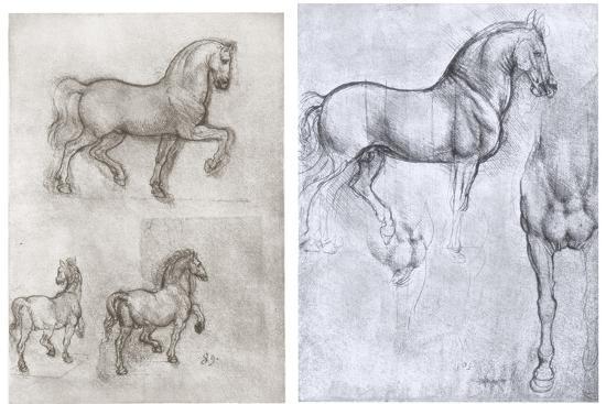 Horses, C1490-1510-Leonardo da Vinci-Premium Giclee Print