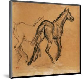 Horses, circa 1882-Edgar Degas-Mounted Premium Giclee Print