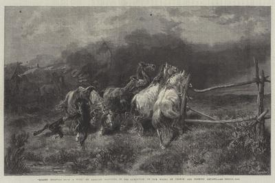 Horses Escaping from a Fire-Adolf Schreyer-Giclee Print