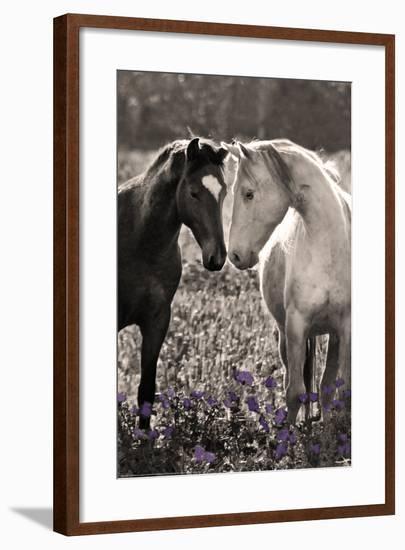Horses I-Sally Linden-Framed Photo