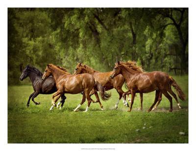 https://imgc.artprintimages.com/img/print/horses-in-the-field-iii_u-l-f8p2ys0.jpg?p=0