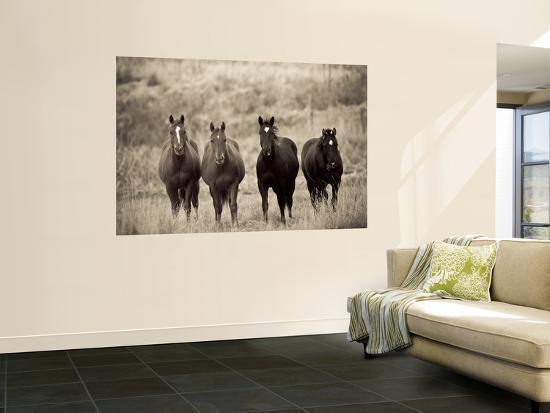 Horses, Montana, USA-Russell Young-Giant Art Print