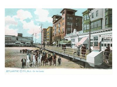 Horses on Beach, Atlantic City, New Jersey--Art Print