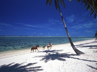 Horses on Beach, Tambua Sands Resort, Coral Coast, Fiji-David Wall-Photographic Print