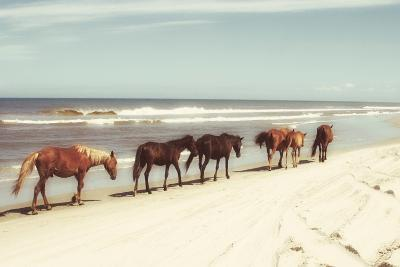 Horses on the Beach-Kathy Mansfield-Photographic Print