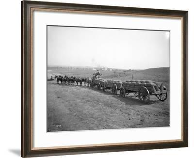 Horses Pulling Wheat Wagons, 1915-Ashael Curtis-Framed Giclee Print