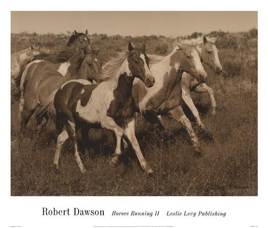 Horses Running II-Robert Dawson-Art Print