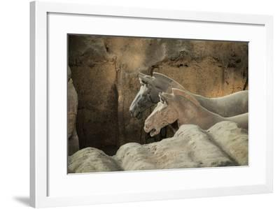 Horses, Terracotta Army, UNESCO World Heritage Site, Xian, Shaanxi, China, Asia-Janette Hill-Framed Photographic Print